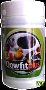 qowfitplus80c